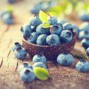 Free Radicals, Antioxidants and Blueberries